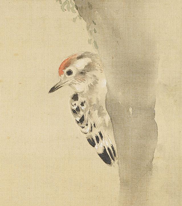桜霧小禽図