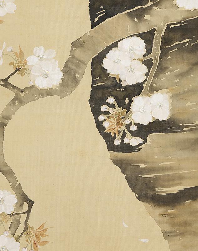 九重桜花図