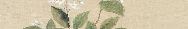 卯の花郭公図