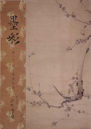BOKUSAI Vol.8