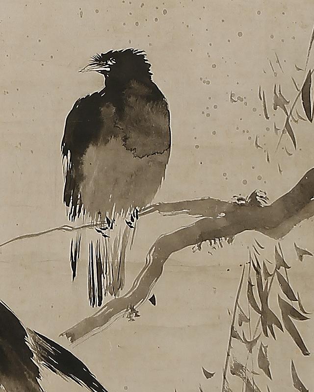 柳ニ叭々鳥図